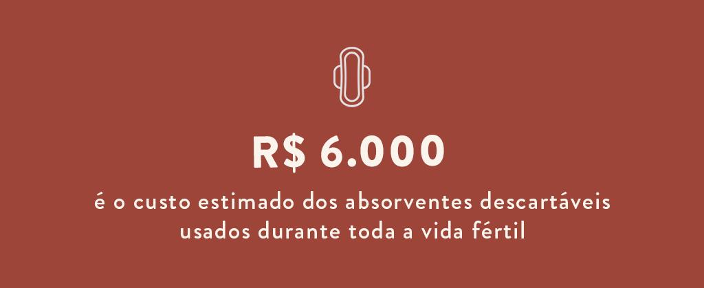 pobreza-menstrual-custo-absorventes
