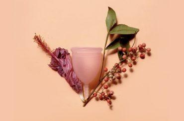 virgens-coletor-menstrual-himen